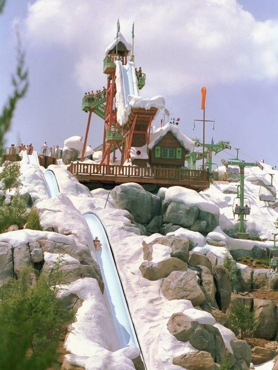 Disney's Blizzard Beach Water Park, Orlando