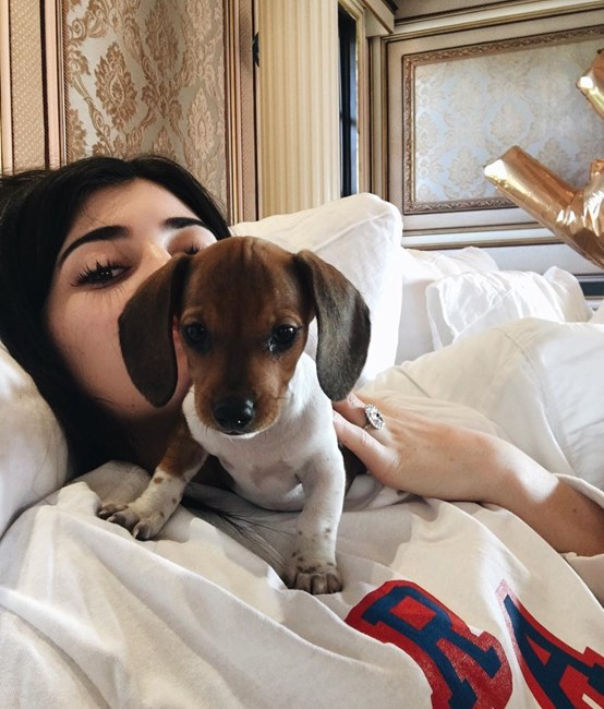Kylie Jenner Is Totally Obsessed with Her New Pup Penny